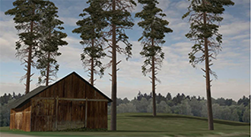 Set Tree 3D - Forest Pine